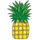 pineapple-1407914_960_720